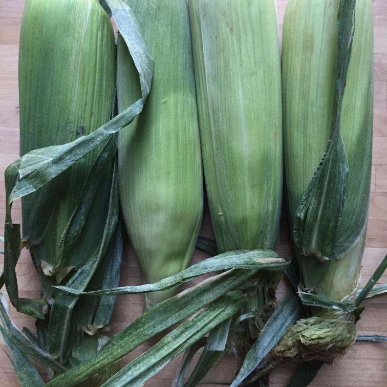 corn soup1
