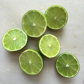 Melon4